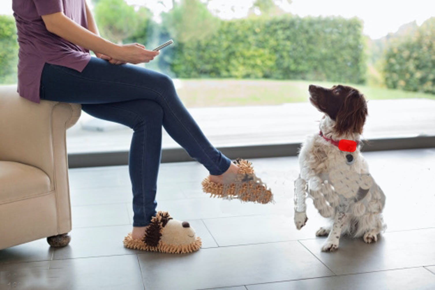 BuzzTrain - Augmenting Communication with Your Dog