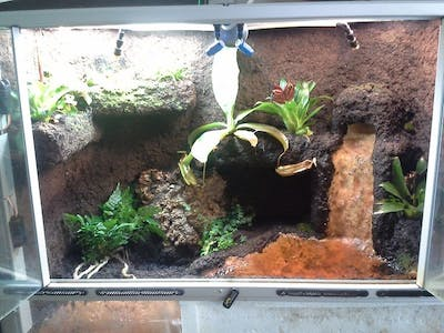 Terrarium with Linkit ONE