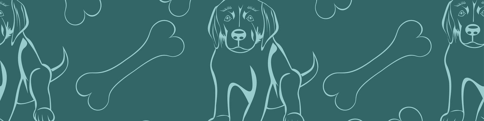 The SeeedStudio BeagleBone Green IoT Contest
