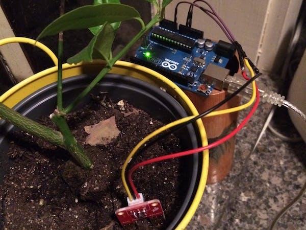 The Quantified Cactus: An Easy Plant Soil Moisture Sensor