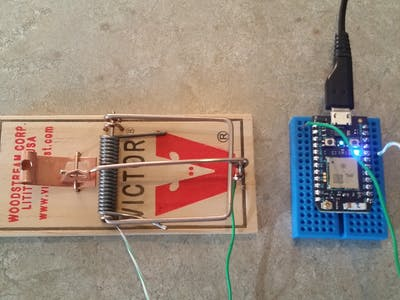 Making a smarter mouse trap