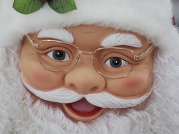 Brainy Santa