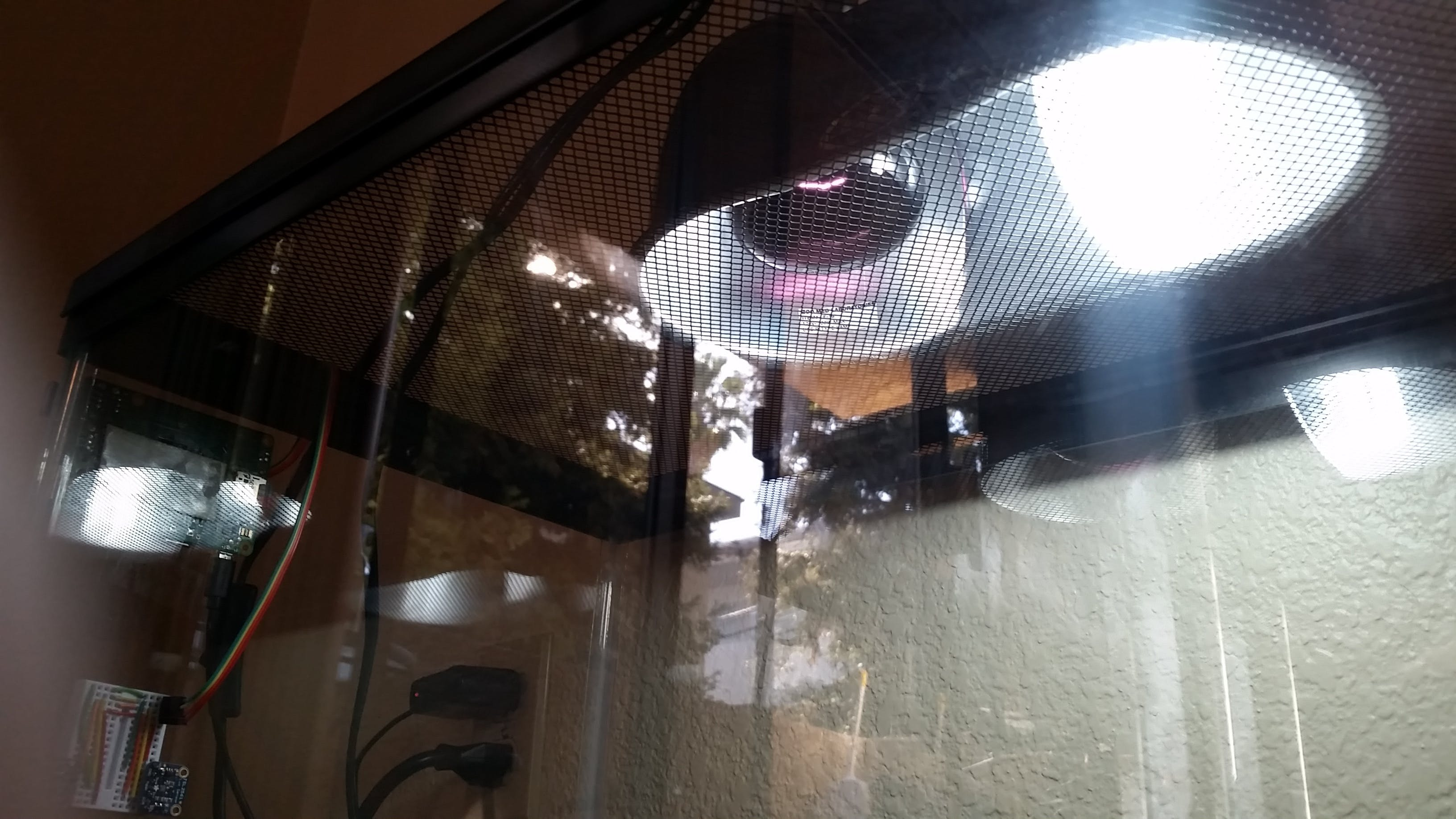 The heat lamp and light lamp
