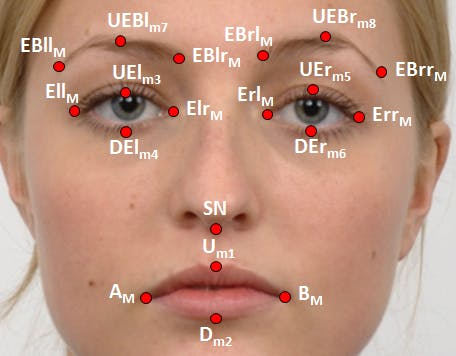 An example of geometric facial features