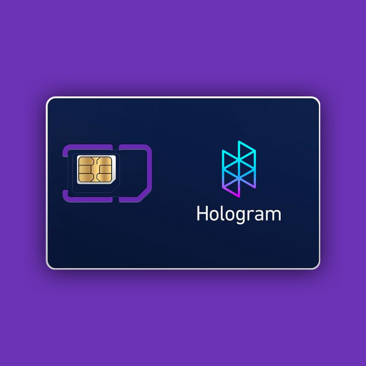 Hologram Global IoT SIM Card
