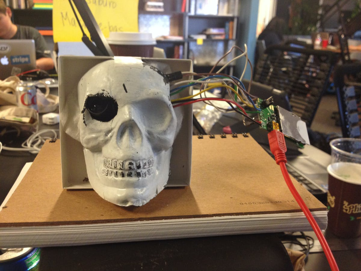 The camera board housed in a plastic skull
