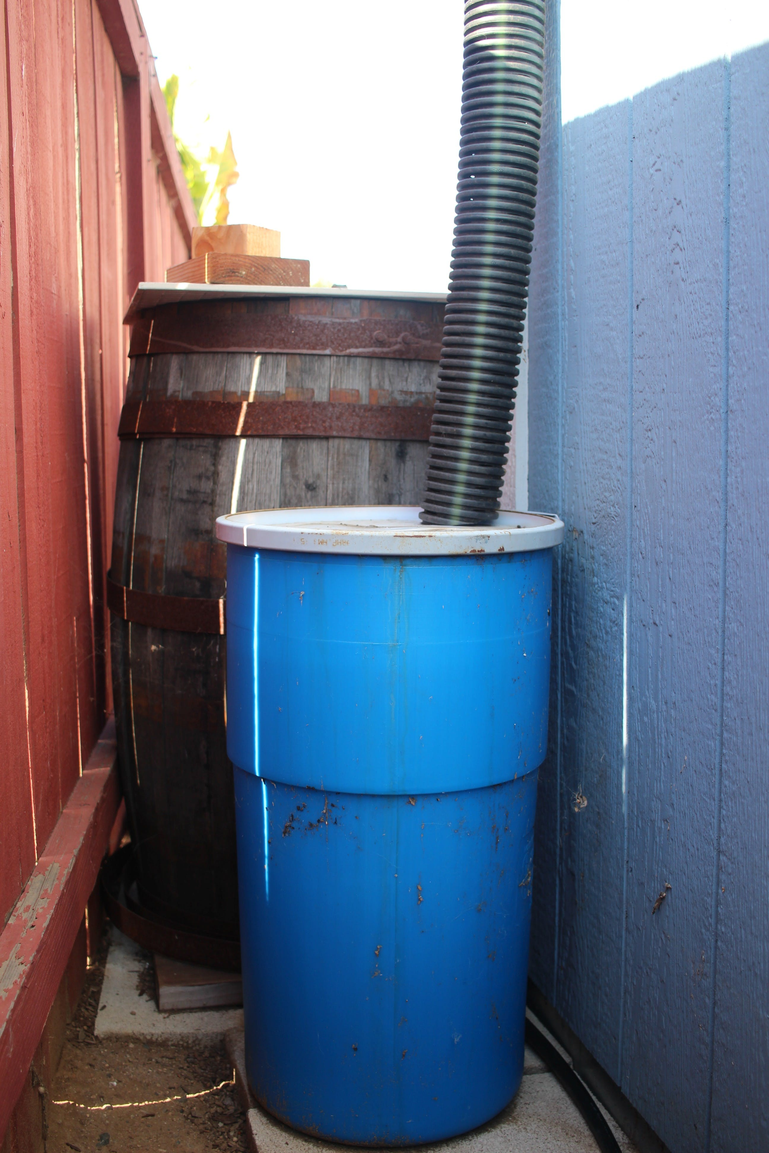 Prototype rain barrel (13 gallons).  Eventually there will be 55 gallon drums in all three wine barrels
