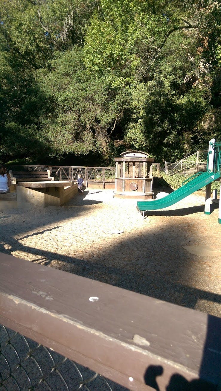 in codornices park, a sandy kid land has fun structures and kids who are learning to spell.