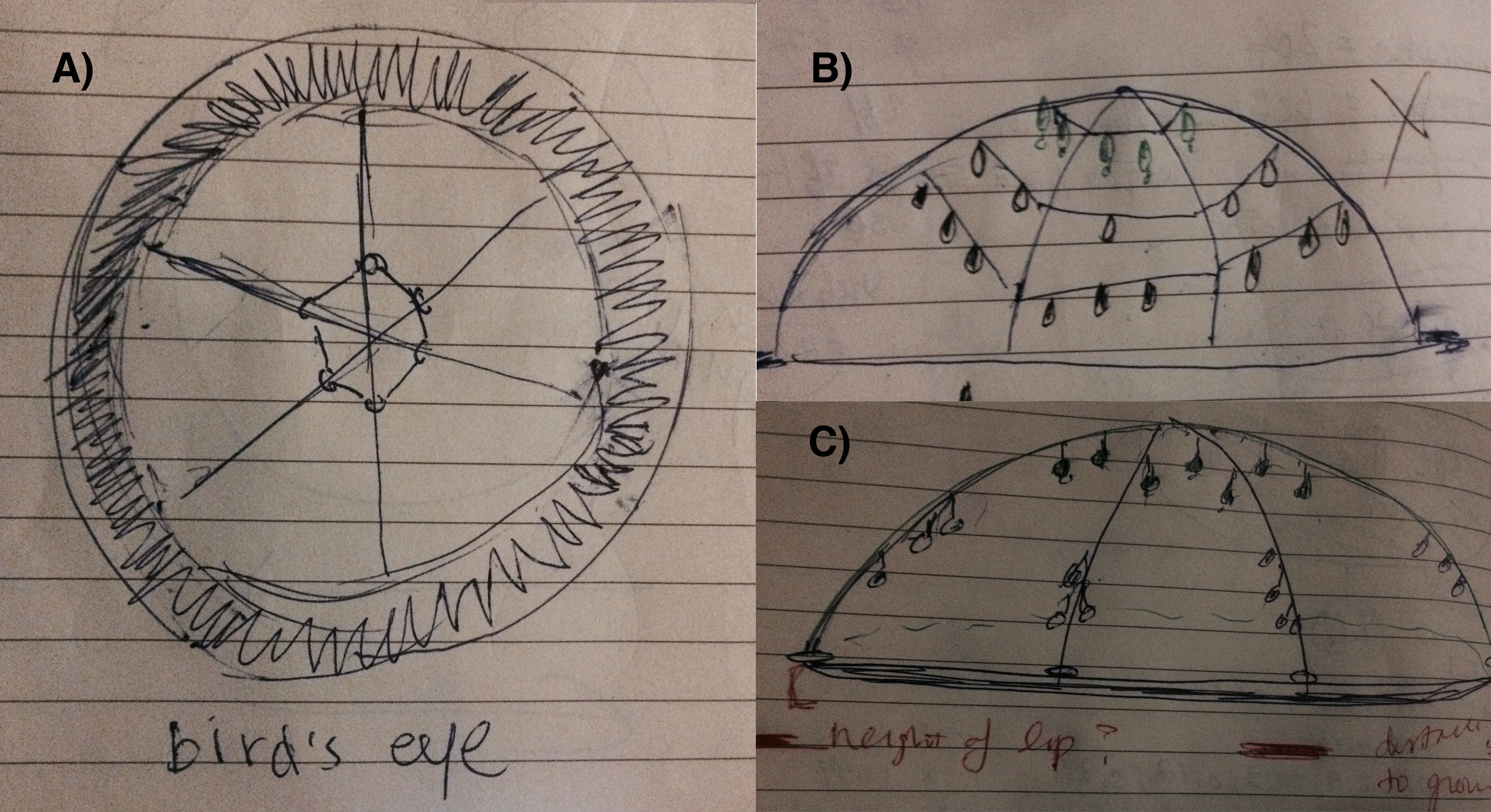 Project Sketches: New idea: Drops of rain showing the # of days of drought!   A) structural frame - 3 arcs? Or 6 bicycle spokes? Ultimately, our choice of materials and the 20-ft diameter made us settle on the 6 spokes design.      B) hanging ...