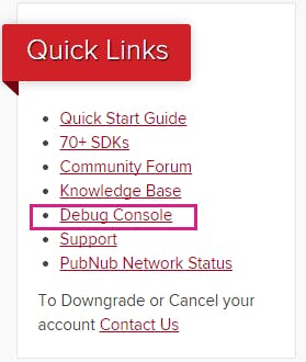 Debug Console in the Quick Links menu