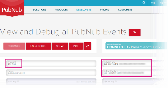 Channel, Publish Key and Subscribe Key in the PubNub Debug Console